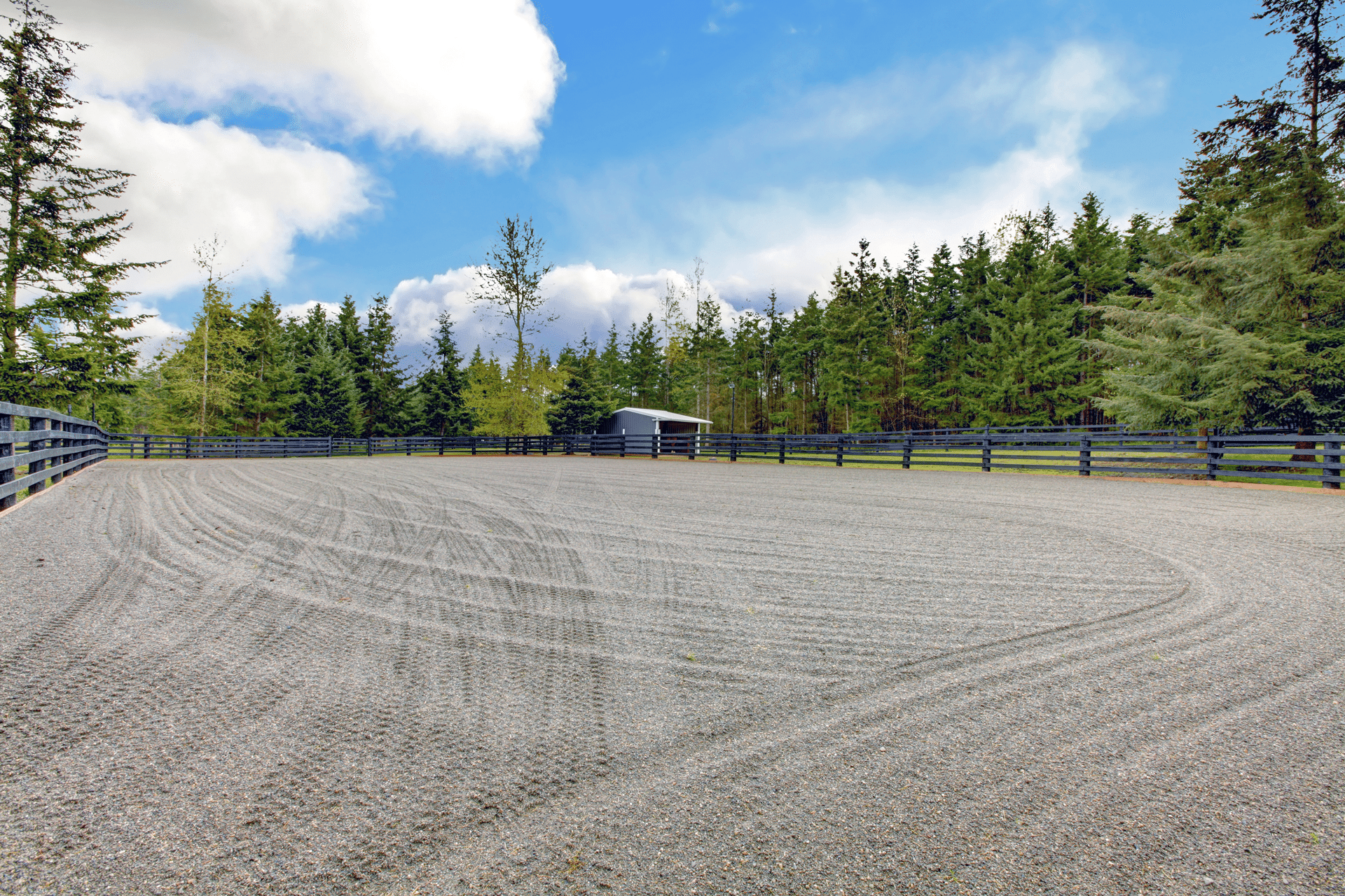 Beautiful completed equestrian arena surrounded by trees