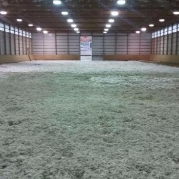 Completed riding arena with artificial surface